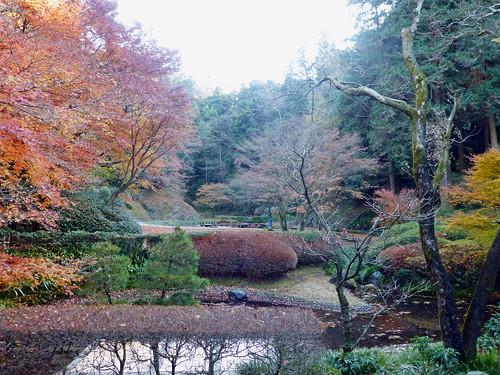2012/12/16 (日) - 13:45 - 300円の募金をして本堂にあがらせていただき、丸窓の向こう側でお茶とおせんべいを食べながら庭園を眺めることができました。