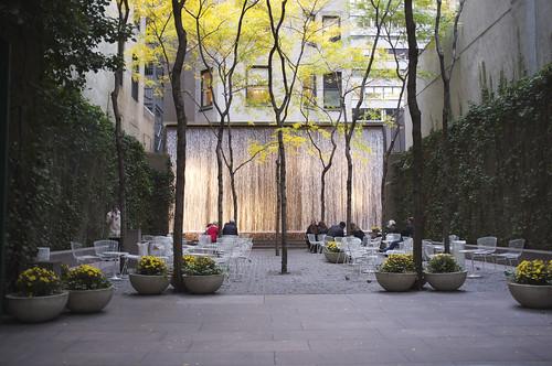 Paley Park, New York   by Aleksandr Zykov