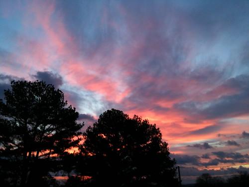 trees sunset sky skyline clouds greenwood arkansas arkansasbeauty
