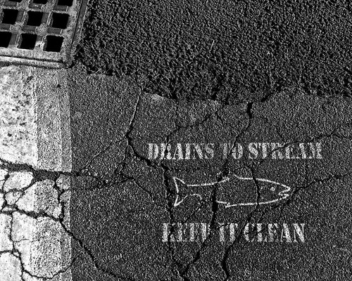 Flickr The No Dumping Drains To Ocean Pool