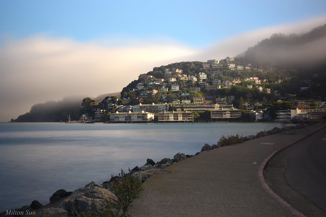 [They Live on the Hill] Sausalito, California