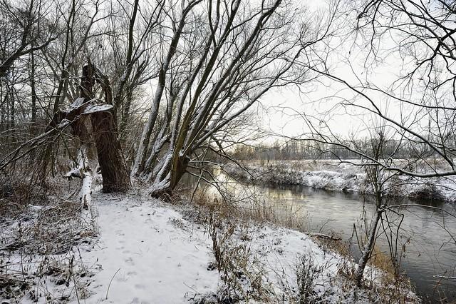 Winterlandschaft 2012