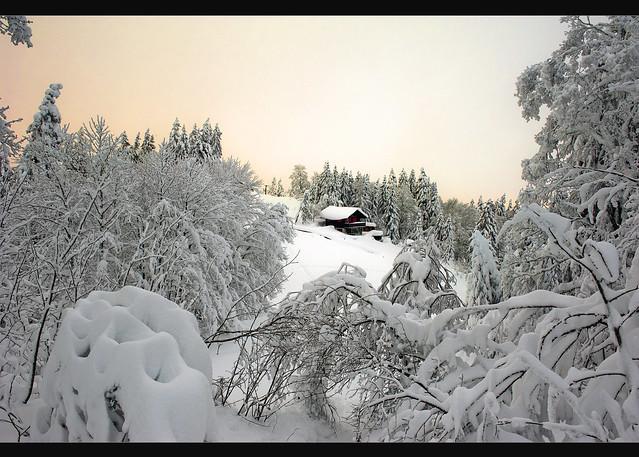 La Vue des Alpes, Canton of Neuchâtel. December 8 , 2012. No. 1345.