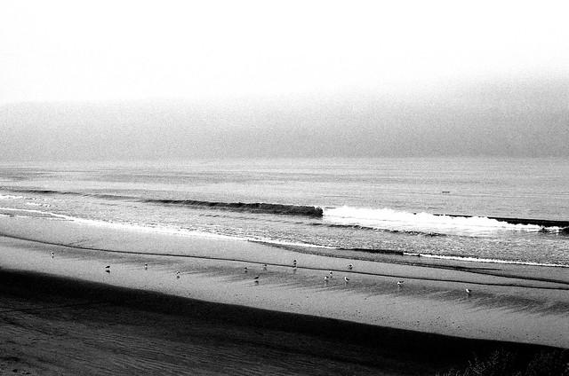 Playa al amanecer (Explored) (NikonFEAgosto16030)