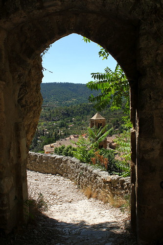 france provence var moustierssaintemarie moustiers village doorway gate view palm tree wall cobble plusbeauxvillagesdefrance