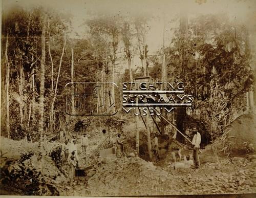 Ravijn Charmes | by Stichting Surinaams Museum