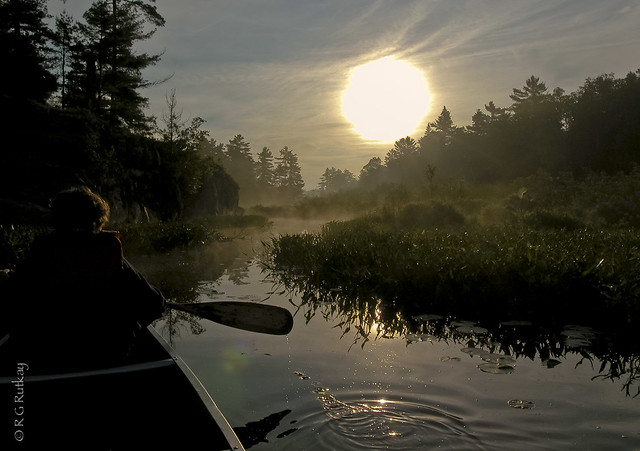 Grundy Sunrise-1472