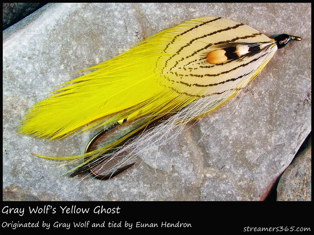 #338/365 Gray Wolf's Yellow Ghost tied by Eunan Hendron
