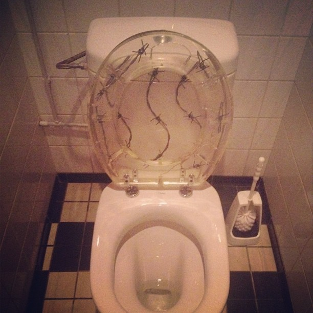 Excellent Barbed Wire Toilet Seat On Instagram Instagr Am P Tegijoni Creativecarmelina Interior Chair Design Creativecarmelinacom