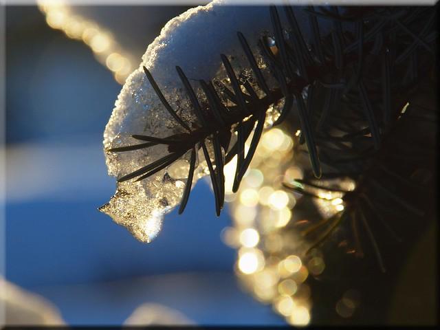 Ice Artwork in the sun light