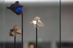 Guimet, Musée national des Arts asiatiques