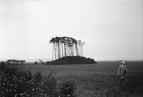 King Ise's Mound, Laholm, Halland | by Swedish National Heritage Board