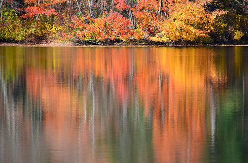 trees usa lake nikon foliage rhodeisland barberspond d7k d7000