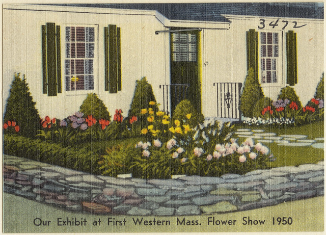 Our exhibit at first western Mass. flower show 1950