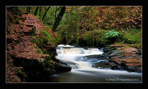 autumn trees brown green nature water yellow river photography waterfall autumnleaves clareglens cotipperary siobhanhayes simplyphotographyie