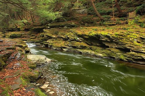 autumn trees creek moss rocks stream hiking pennsylvania foam cascades creativecommons ravine wyomingcounty hemlocks endlessmountains clintontownship easternhemlocks southbranchtunkhannockcreek countrysideconservancy littlerockyglen littlerockyglenpreserve