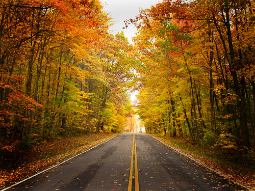 autumn ohio fall fb ashtabulacounty genevastatepark picmonkey