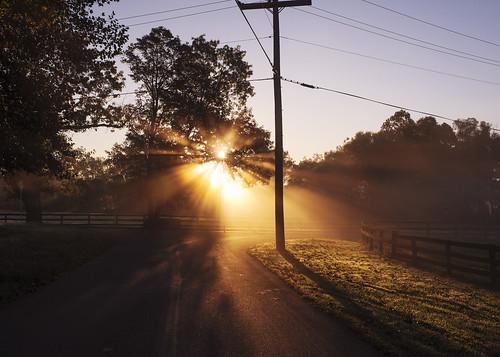 light sun sunlight nature beautiful fog sunrise landscape 911 goldenhour lightrays goldenlight