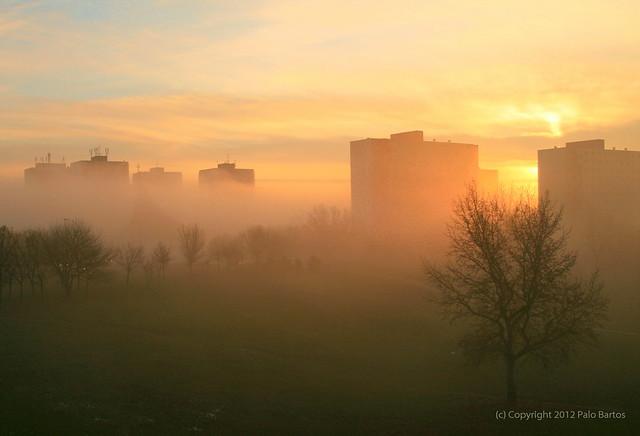 Back Home in Dubravka - December Morning