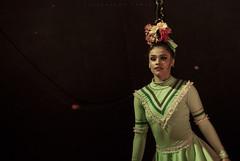 Tierra de circo