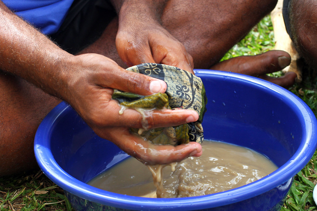 Herbal medicine drink Kava from Fiji | Traditional Fijian wa