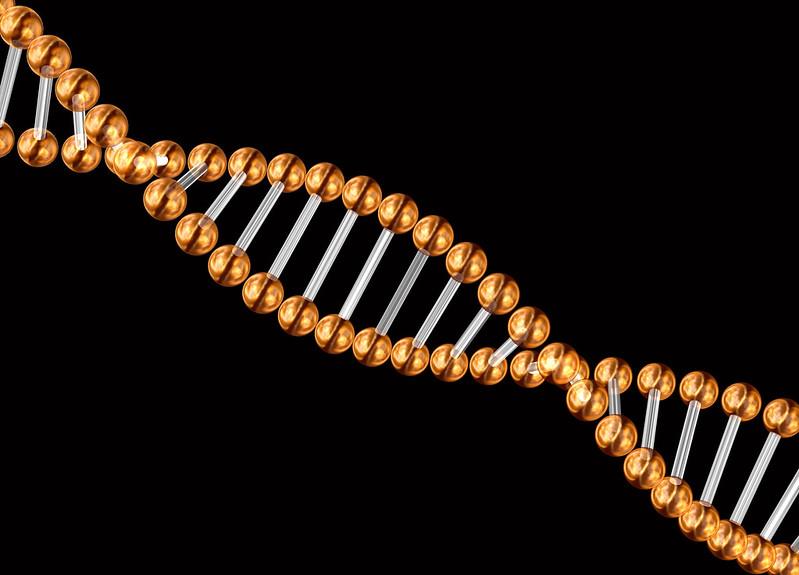 3d genetic code