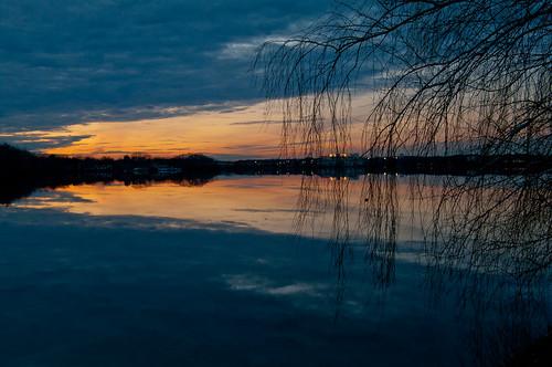 sunset tree silhouette clouds reflections massachusetts newengland wakefield lakequannapowitt
