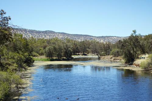york westernaustralia avonriver