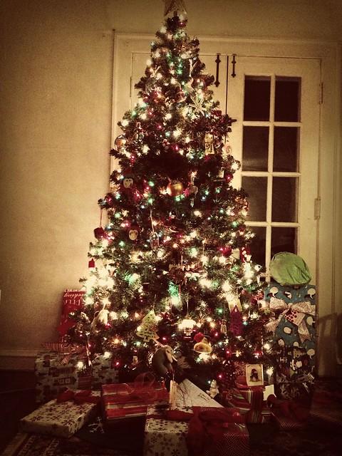 Tree is set.
