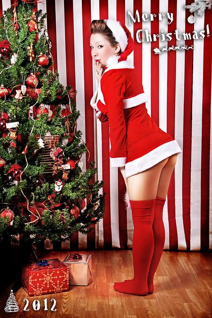 Merry Christmas 2012 (6)