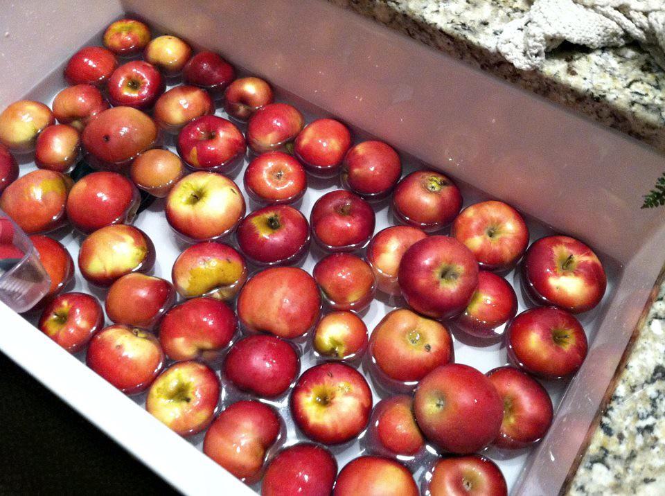 washing apples to make apple sauce