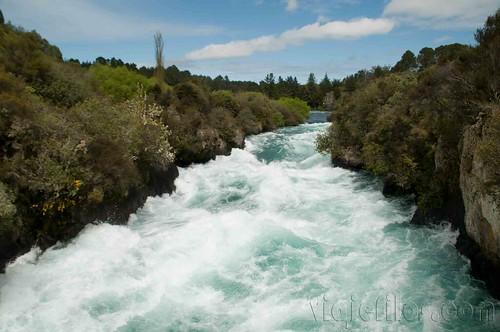 Nueva Zelanda, Isla Norte 35