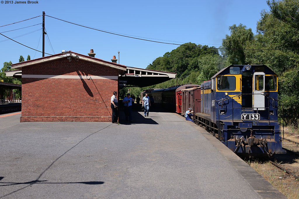 Y133 at Castlemaine by James Brook