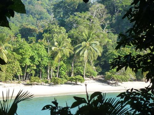 Parque Nacional Manuel Antonio 2