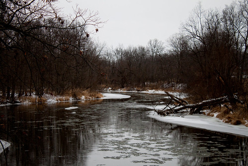 trees winter snow ice water river