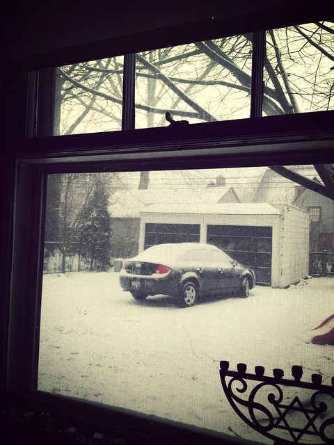 Snowpacolypse arrives