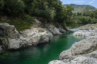 Pelorus River (at Pelorus Bridge) | by Arbron