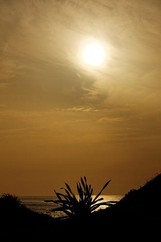 sunset seascape beach water clouds sony tamron90mmf28 mygearandme sonya55