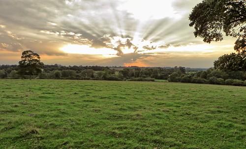 canon powershot sx280 landscape view sky clouds sunset westbury trees grass field buckinghamshire rays