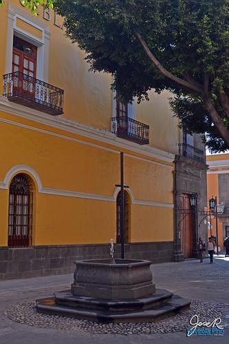 20121227_carolinopta_fuente
