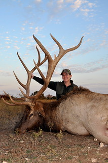 """405"""" 