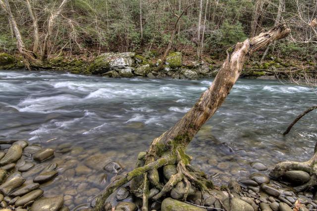 Caney Fork River 2, Virgin Falls SNA, White Co, TN