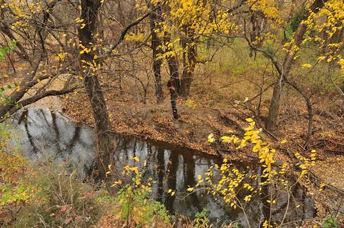 autumn fall kansas wichita chisholmcreekpark chisholmcreek