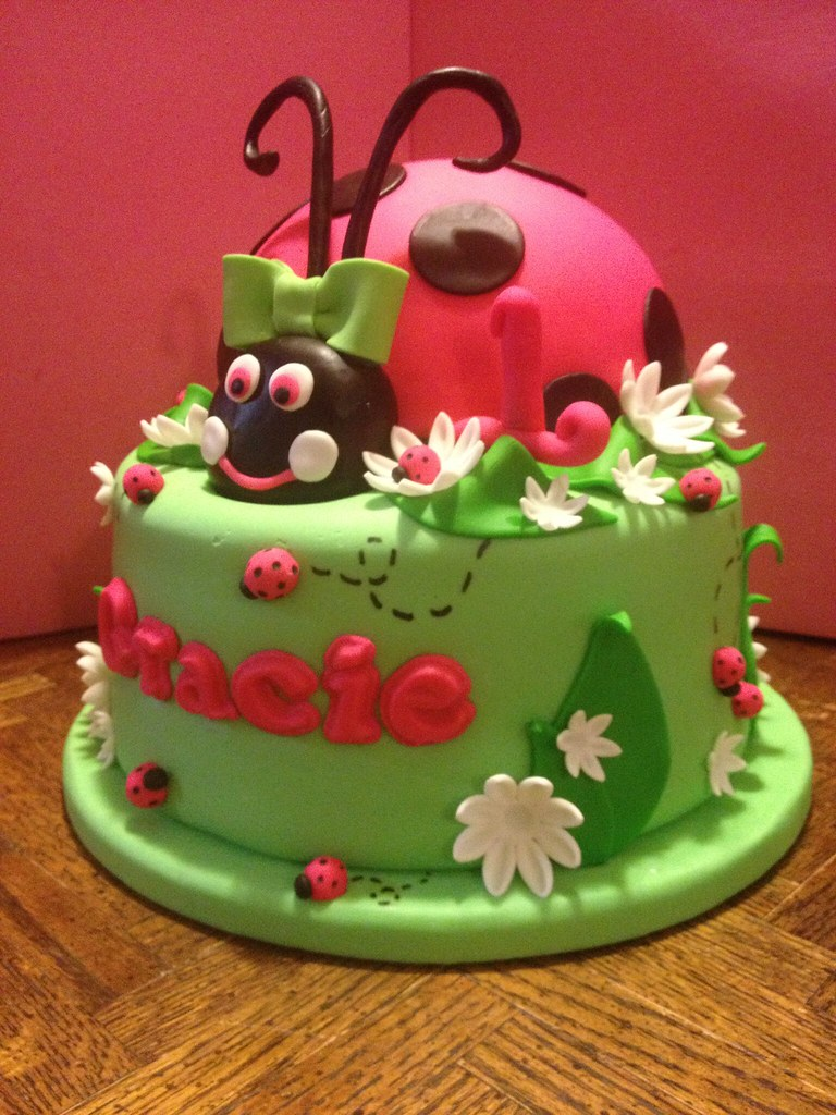Terrific Ladybug 1St Birthday Cake Both Ladybug And Round Cake Cove Flickr Birthday Cards Printable Giouspongecafe Filternl