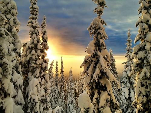 winter snow sunrise silverstar uploaded:by=flickrmobile flickriosapp:filter=nofilter
