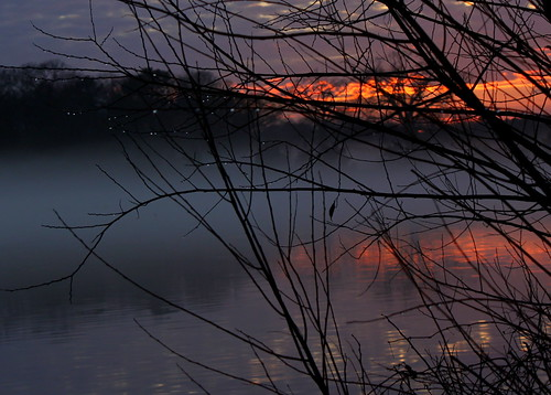 sunset mist water silhouette landscape evening droplets pond branches northcarolina 15 113picturesin2013
