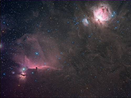 Orion widefield | by Andysea1