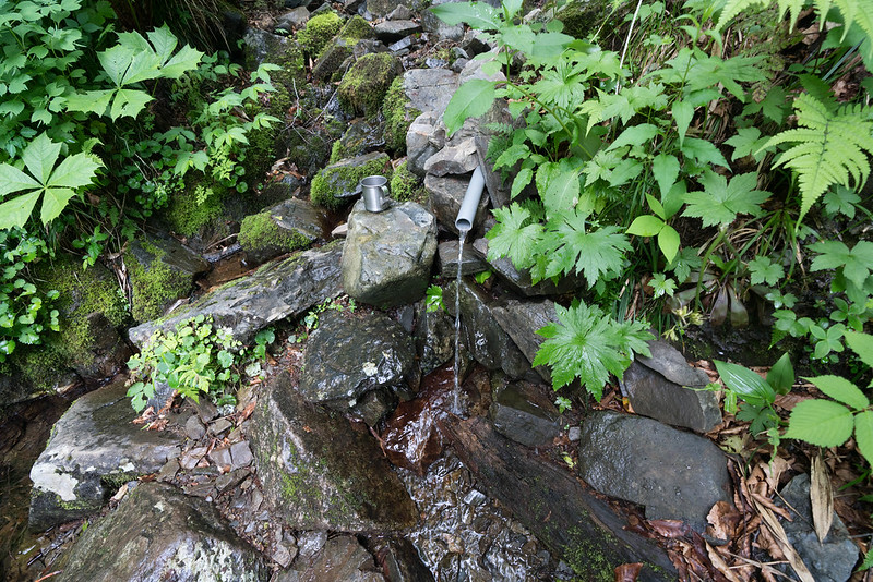 田代山登山道の水場