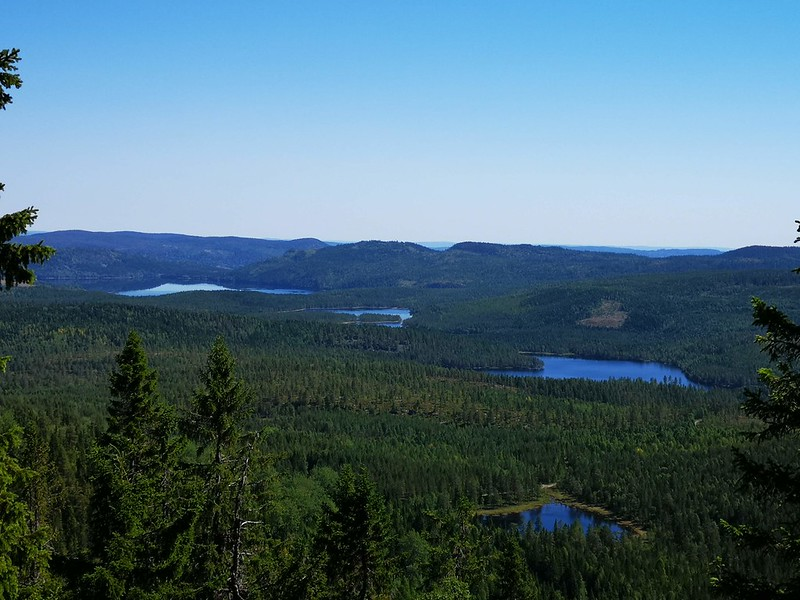 12-Utsikt mot Glitre fra Snaukollen