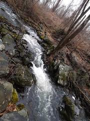日, 2013-01-13 14:03 - Pocantico River Trail
